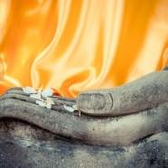 Free Buddhism and Meditation Summit Nov 13-16
