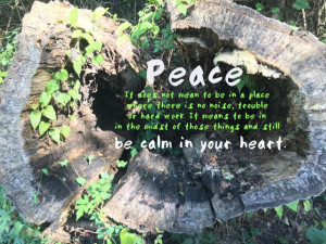 Peace in the midst of trouble